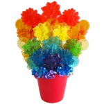 Rainbow Lollipop Bouquet